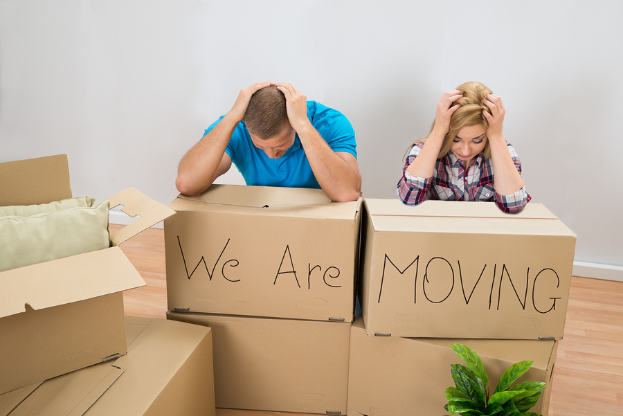 Photo We Are Moving